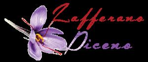 Zafferano Piceno | Produzione e Vendita Zafferano Marche